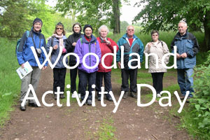 Woodland Activity Day