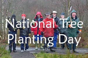 National Tree Planting Day 2009